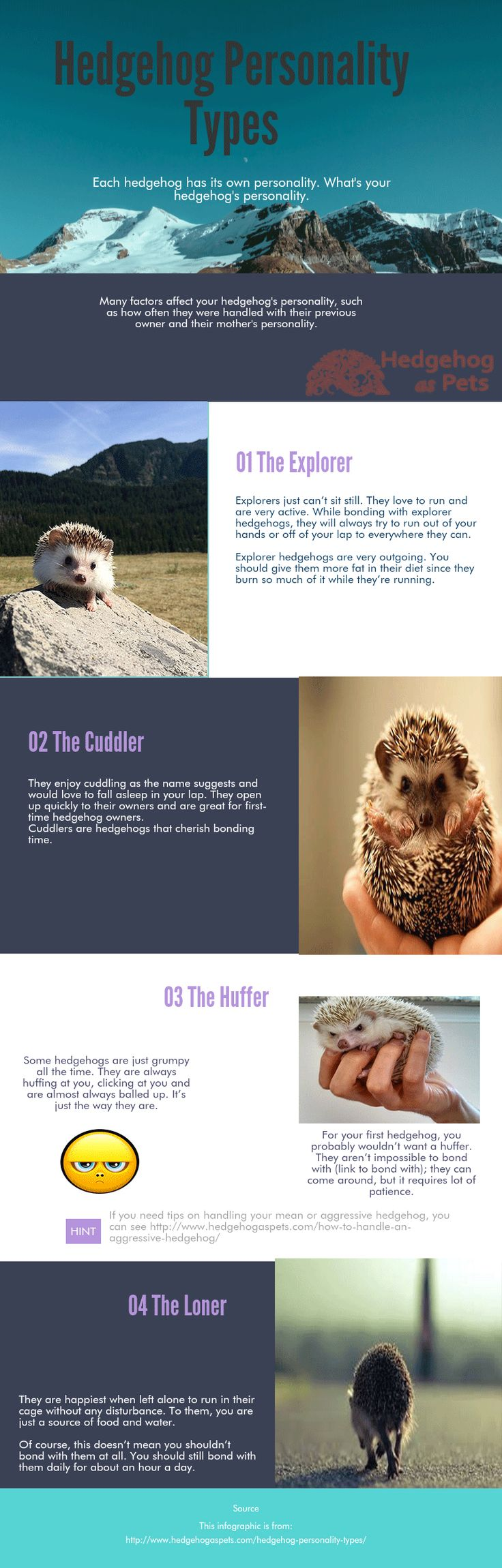 Hedgehog's personalities depend on many factors, the most important is how often they are handled and in which way. A hedgehog that was neglected, not handled very often or handled with gloves/in an intimidating manner are most likely to be mean and aggressive. Another factor that plays a role in your hedgehog's personality is their …