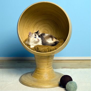The Refined Feline Kitty Ball Bed, Bamboo modern pet accessories. http://www.houzz.com/photos/2333399/The-Refined-Feline-Kitty-Ball-Bed--Bamboo-modern-pet-accessories-