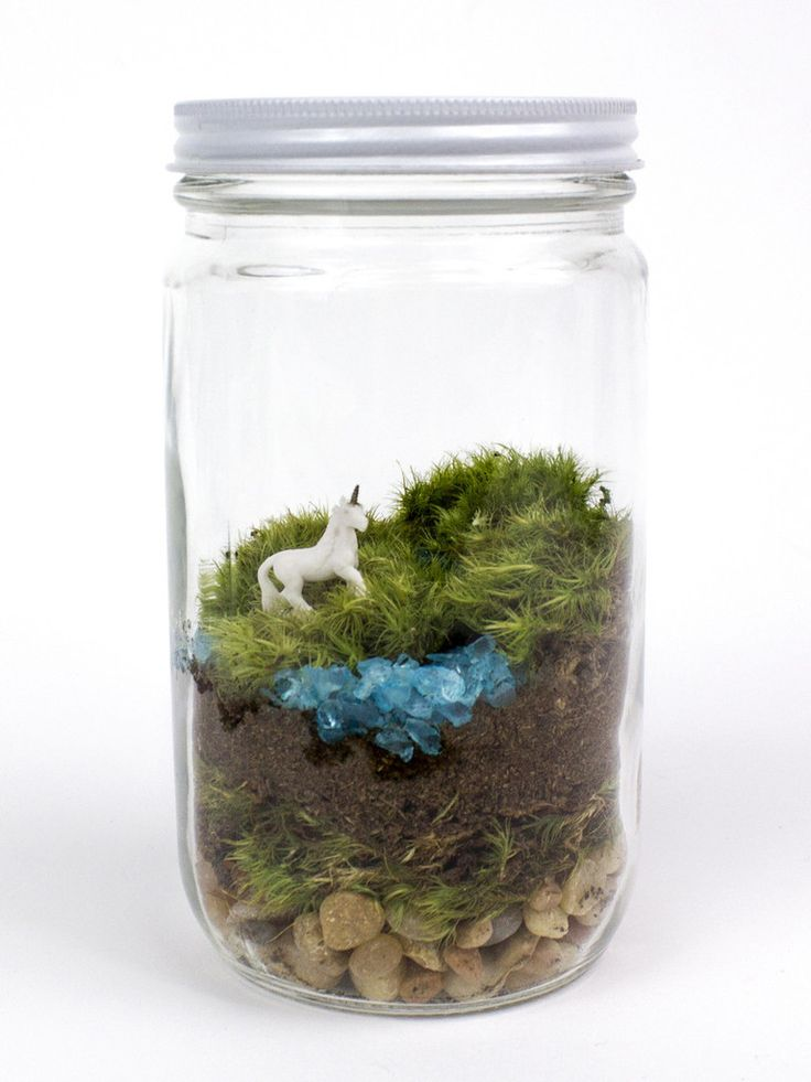 """This kit includes all the ingredients you need to build a magical mossy world! CONTENTS Clear glass jar with lid, approx. 7"""" tall x 3.5"""" wide* High quality livi"""