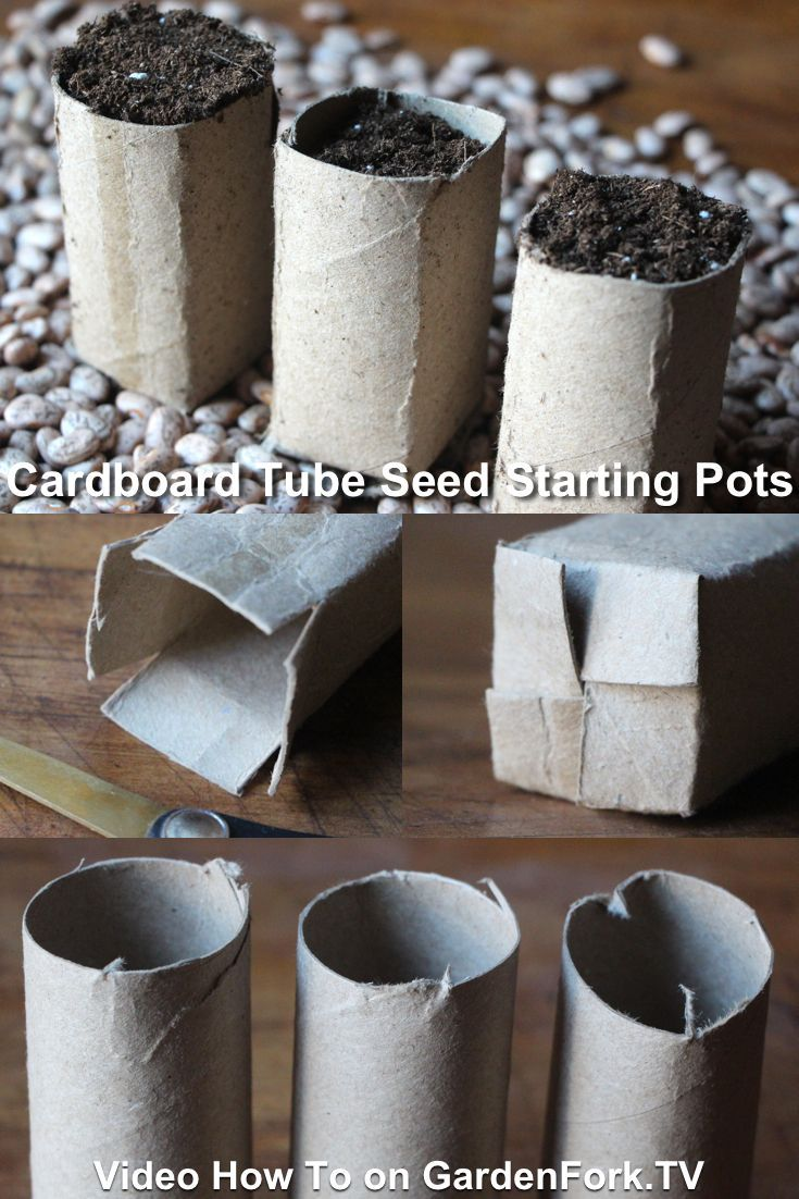 Eco Seed Starting Pots made from cardboard tubes   GardenFork.TV