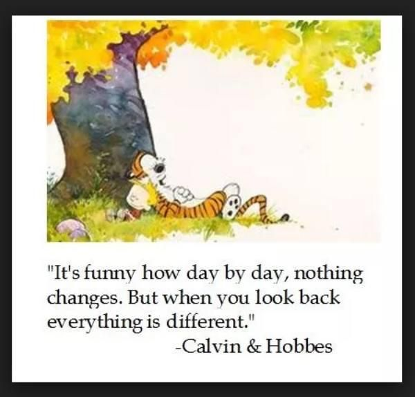 Calvin And Hobbes Quotes : theBERRY