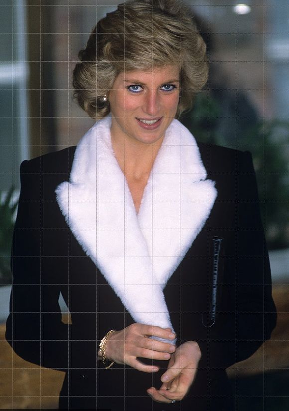 1000 images about princess diana on pinterest prince Diana princess of wales affairs