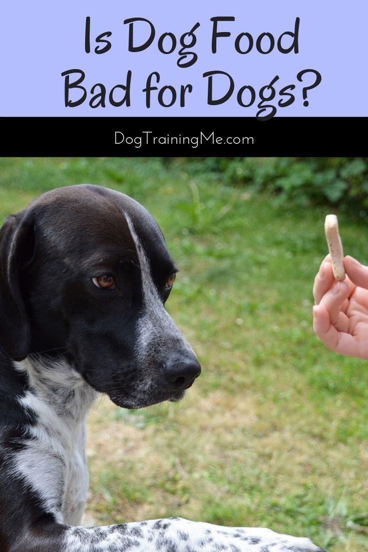 Dog Food Secrets Is Dog Food Bad For Dogs Foods Bad For Dogs