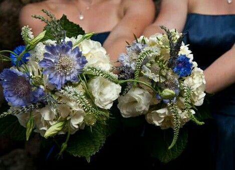Bridesmaid's Bouquets: White Jumbo Hydrangea, White Veronica, White Lisianthus, White Garden Roses, Blue Cornflower, Blue Scabiosa Flower, Green Foliage