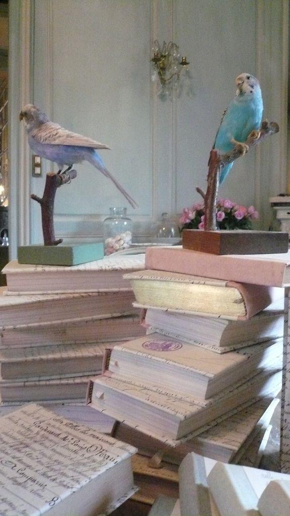 Le Grillon Voyageur » Galerie