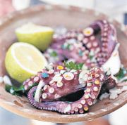 Octopus fishing banned in the Axarquia from this September