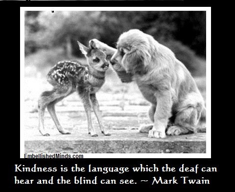 """""""Kindness is the language which the def can hear and the blind can see"""": Baby Deer, Puppies, Friends, Dogs, Sweet, Pet, Baby Animal, Adorable, Puppy"""