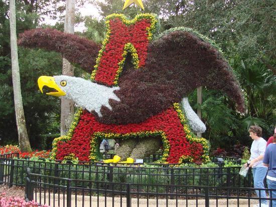 Logo Topiary   Picture Of Busch Gardens, Tampa   TripAdvisor