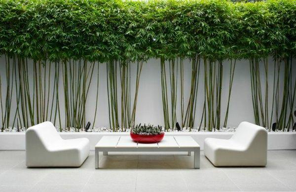brise-vue en bambou et mobilier de jardin blanc de design minimaliste