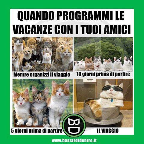 A me capita sempre così #amici #bastardidentro #vacanze www.bastardidentro.it