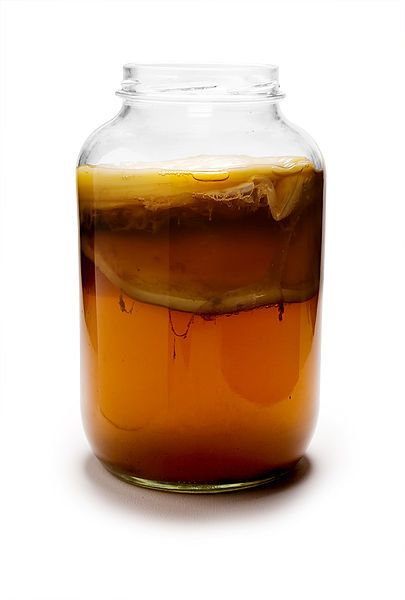 What Is Kombucha and why is it so healthy for you? WholeLifestyleNutrition.com