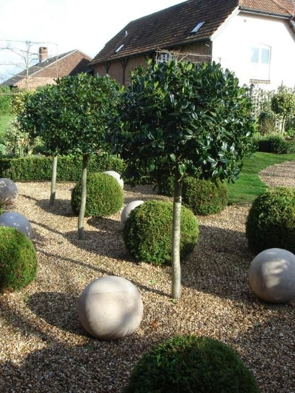 69 best garden formal images on pinterest plants hedges and buxus topiary and stone balls with lollipop standards workwithnaturefo