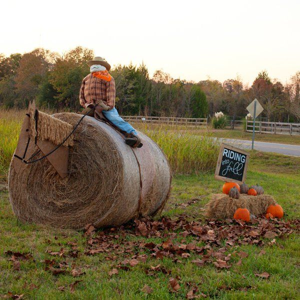 17 best images about hay bale ideas on pinterest for Bales of hay for decoration