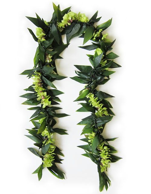 The richness of Hawaii's lush green landscape is captured in this beautiful fresh Hawaiian Lei ~ Maile-Style Ti Leaf Lei wrapped with petite green orchids