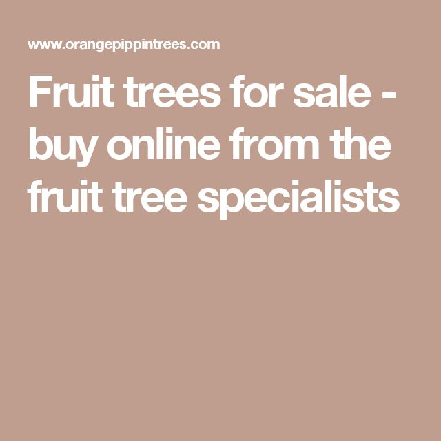 Fruit trees for sale - buy online from the fruit tree specialists