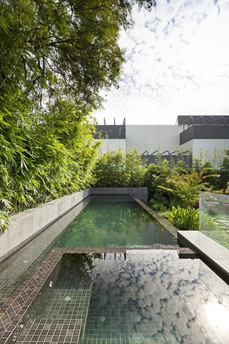 Award-winning Melbourne swimming pool, with the Gold Award for Best Pool and Landscaping Combination at the 2016 SPASA Awards.
