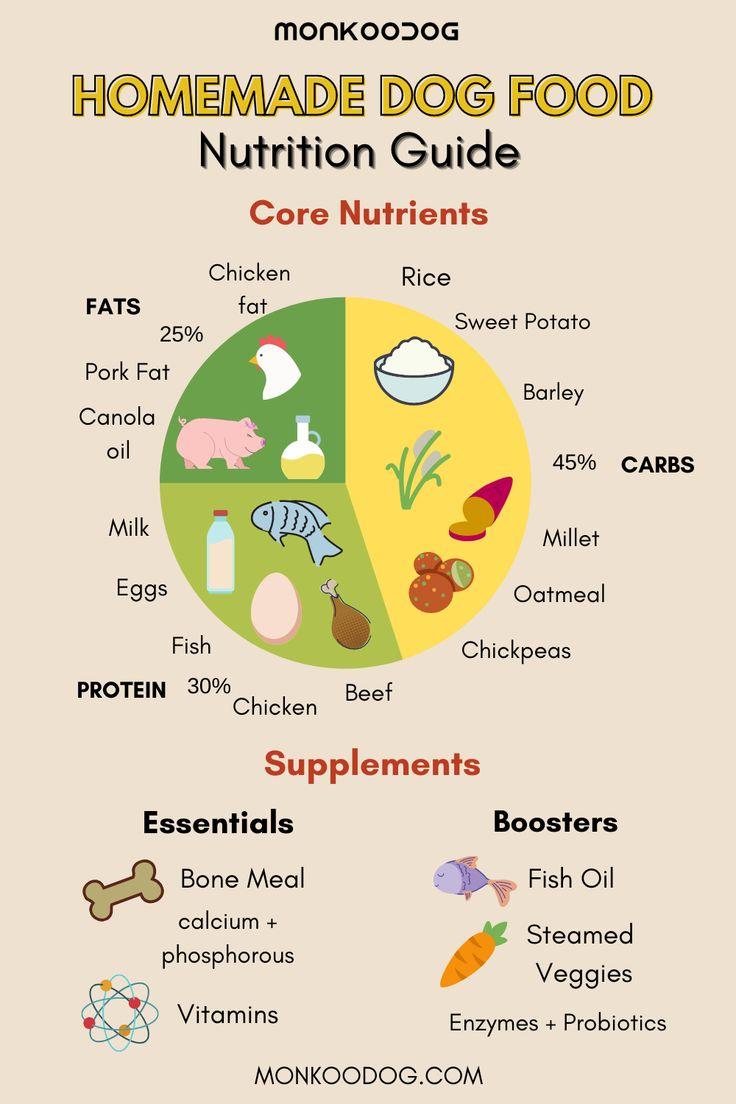 Homemade dog food nutrition guide healthy dog food