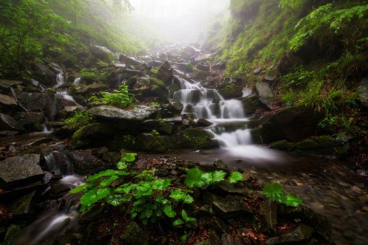 Potok Stolovec | Beskydy