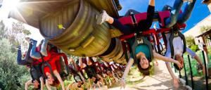 Do you have a need for speed? Race over for an overview, updated for 2016, of the world's 10 fastest roller coasters.: Honorable Mention: Furius Baco- 84 mph