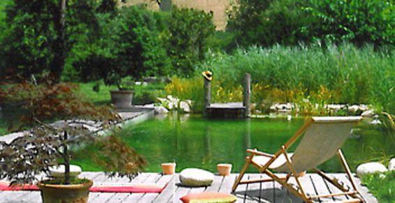 Jardin d 39 eau et piscine piscines naturelles ussel for Piscine ussel