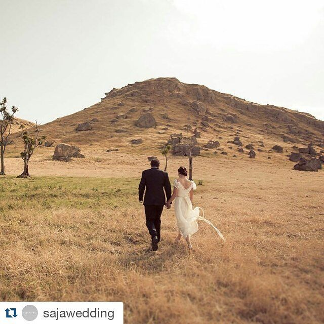 Repost of our paperswan bride Kate's wedding shot by the talented @eva_bradley_photography #Repost #sajawedding #Wedding #weddingdress #bride #weddingplanner #weddingplanning #weddingideas #Repost @sajawedding with @repostapp @Eva_bradley_photography wrote that she gets feverishly excited to shoot at Oruawharo in Central Hawke's Bay and it's easy to see why! Check out Kate & DK's #NewZealandwedding today on the blog w/ @paperswanbride!!#sajawedding #modernlovestories #weddingphotography…