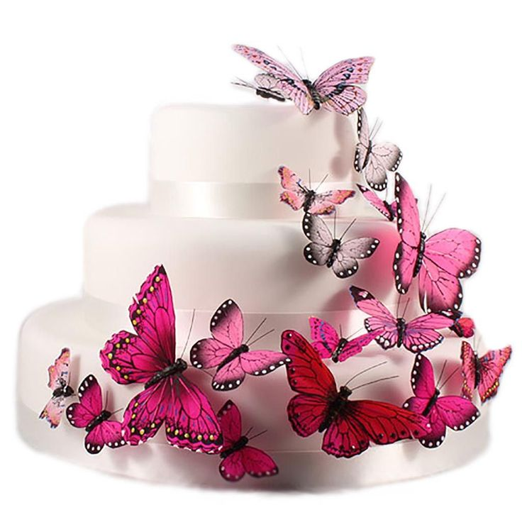Hand Painted Butterfly Cake Decor Set in Glamour Pinks