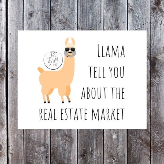 SALE! Real Estate Personalized 4×6 Postcard | Farm or FSBO Mailer Unique Llama Design Realtor Busine