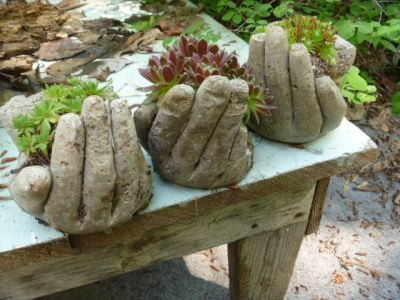 A Handful of Hypertufa Hands: I had so much fun with these hypertufa hands - they're tricky to make, because they break so easily, but boy, are they effective.    If you have some surgical gloves, some Portland cement and a bit of peat moss and perlite, you need to do these...