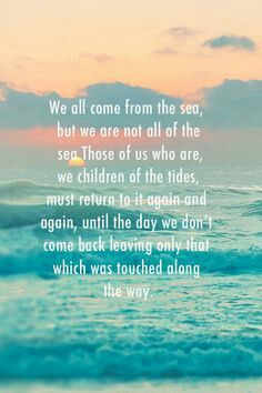 Live like Jay. Surfer Jay Moriarty. RIP Adventurer
