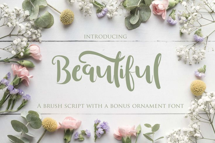 Beautiful Font  Beautiful is a wonderful brush font with a bouncing baseline, and comes with bonus ornaments. This high contrast, modern script lives up to its namesake across a large range of design ideas.