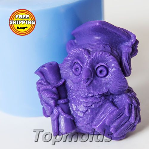 Material: Flexible Silicone Mold Name: Silicone Soap Mold - Wise Owl 2 3d.   eBay!