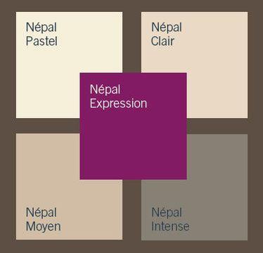 Couleurs dulux valentine tablette de couleur pinterest - Peinture violet gris ...