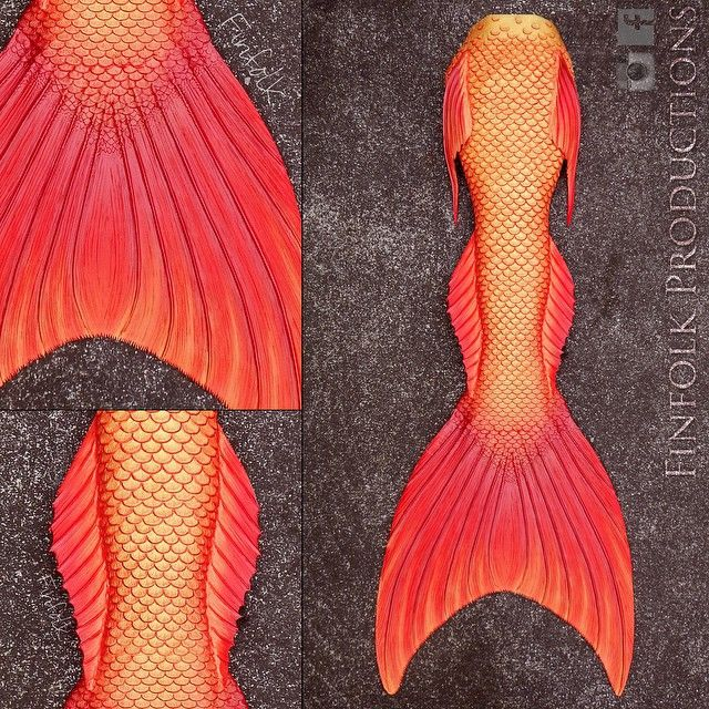 Fresh fins straight out of the Finfolk studio on this fine Hawaiian morning. Double tap our handsomest new merman tail if you're a fan! #merman #mermenofinstagram #mermaids #Finfolk #FinfolkProductions #smoothon #silicone #dragonskin #alliteration #dragon #freshwater #sunny #happysaturday