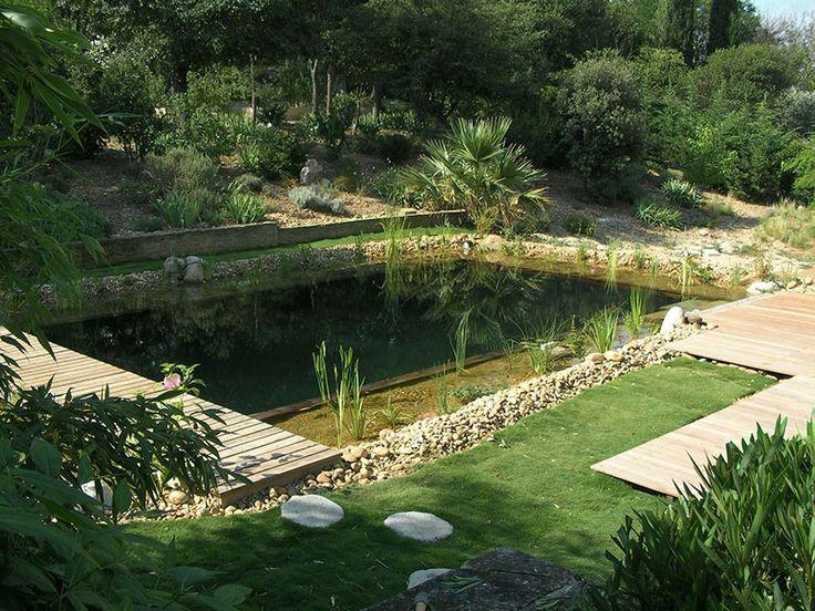 Piscine naturelle écologique Lagune.