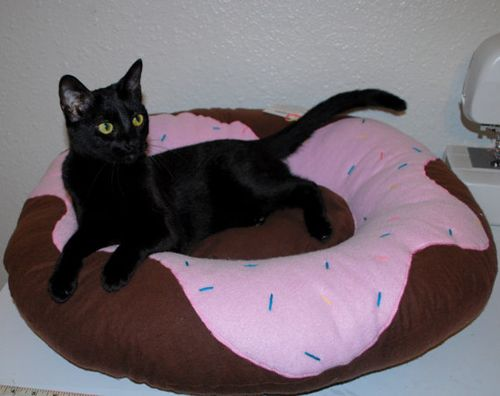 Frosted Donut Pet Bed - $50, KeikopetDonuts Beds, Cat Beds, Pets Beds, Kitty Beds, Donuts Cat, Pet Beds, Donuts Pets, Frostings Donuts, Black Cat