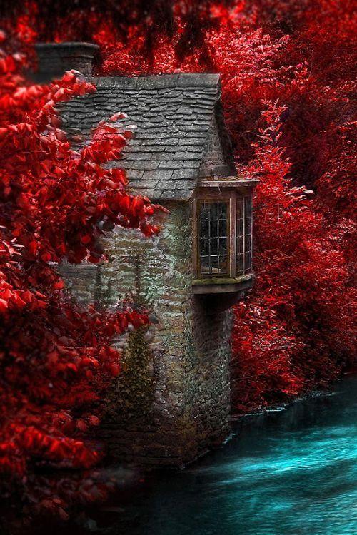 Love the amazing crimson colors surrounding this River House in England. #travelingTOMS   Photo via otrgirl