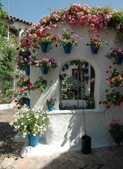 Festival y concurso de patios cordobeses (Córdoba, España). Adoro este concurso!