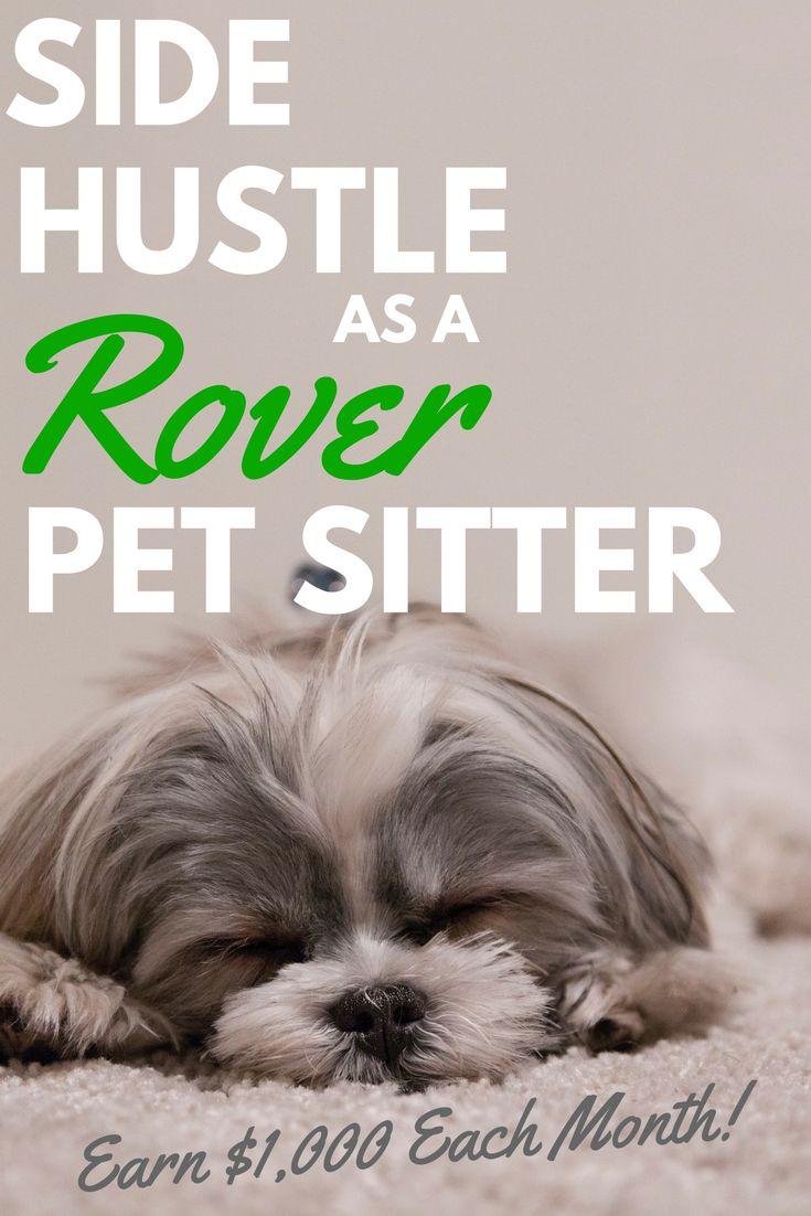 how to make money pet sitting