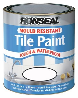Mold And Mildew Resistant Bathroom Paint 28 Images Bathroom Paint Mould Resistant 28 Images