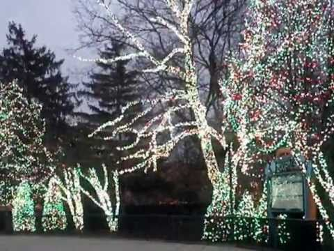 Gray Zone Toledo Zoo Lights Before Christmas - Related Indian Videos, Bollywood Videos - uservideos.smashits.com