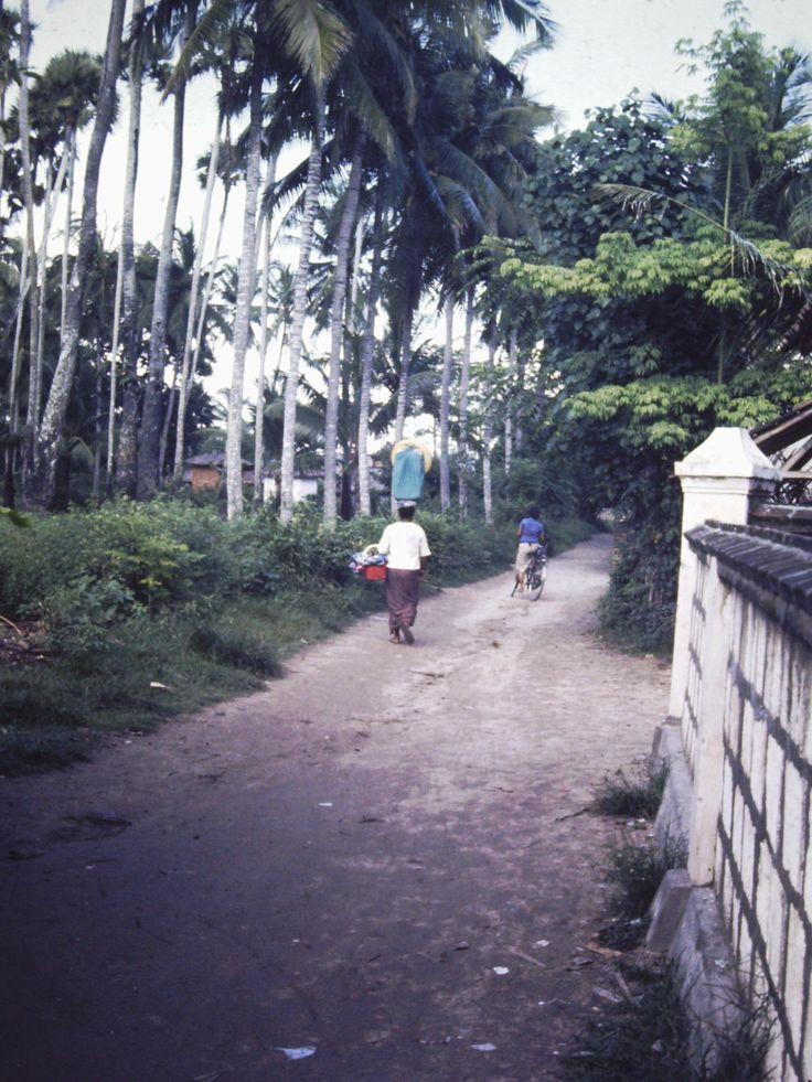 Kuta 1977
