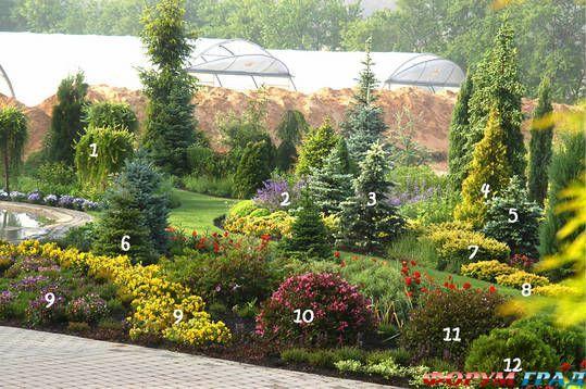 Использованные растения: 1. Лиственница европейская 'Pendula'  2. Котовник Фассена 'Walkers Low'  3. Ель колючая 'Maigold'  4. Туя западная 'Aurea' 5. Ель голубая f. glauca (compacta)  6. Пихта корейская – Abies koreana 7. Тис ягодный 'Washingtonii' 8. Тис ягодный  9. Виола, Анютина глазки  10. Вейгела цветущая 'Purpurea Nana' 11. Вейгела корейская - Weigela florida 12. Туя западная 'Danica'
