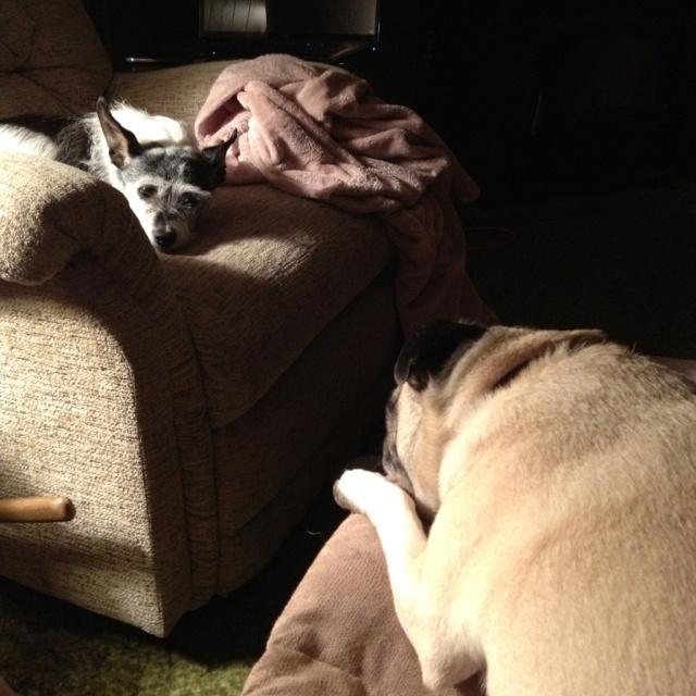Couple of lazy girls