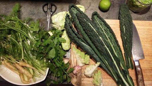 Biodynamic veggies. Www.stedsans.nu