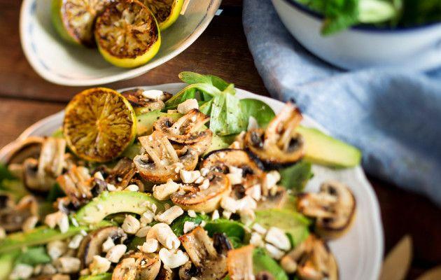 Viljellyt sienet ovat todellista lähiruokaa – näin teet niistä upeita herkkuja
