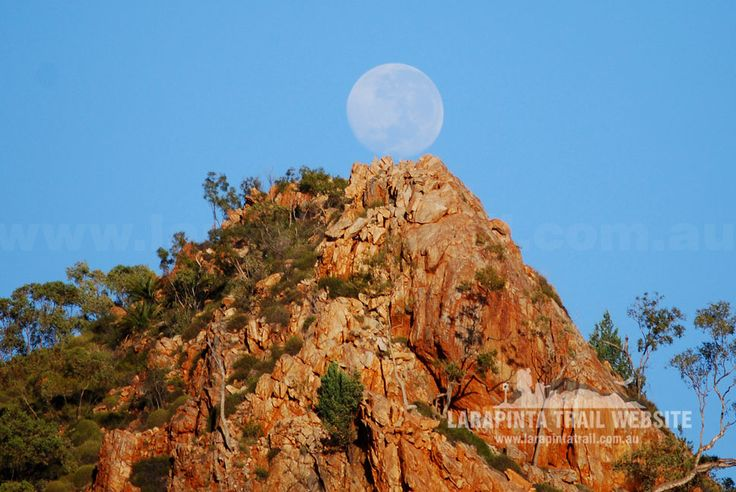 Great early morning shot of the full moon over the Chewings Ranges along Section 3, Larapinta Trail. © Explorers Australia Pty Ltd (www.explorersaustralia.com.au)