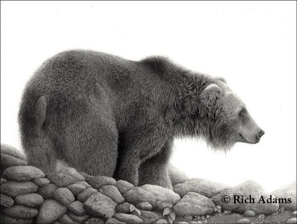 15 Best Images About Graphite Magic On Pinterest border=
