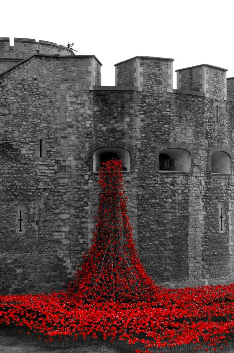 Blood Swept Lands and Seas of Red: 888,246 Ceramic Poppies at the Tower of London to commemorate the 100th anniversary of WWI, by Paul Cummins