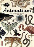 Animalium :  Tournez les pages de ce grand musée de papier et plongez dans l'incroyable diversité du règne animal. Combien d'espèces peuplent la Terre ? Quels animaux sont apparus les premiers ? Qui sont nos cousins les plus proches, et les plus éloignés ? A travers les planches de ce bel album, vous vous émerveillerez des formes infinies que peut prendre le vivant et apprendrez une foule d'anecdotes étonnantes sur la vie et les moeurs de nos voisins les animaux.