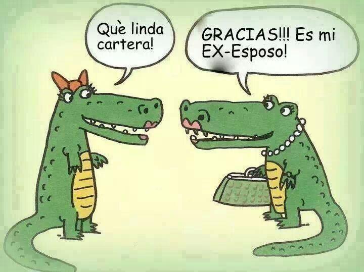 humor cartera de cocodrilo